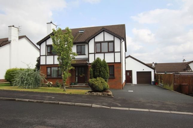 Thumbnail Detached house for sale in Oaklands Drive, Newtownabbey
