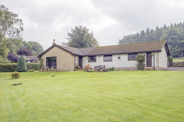 Thumbnail Bungalow for sale in Muckhart, Dollar