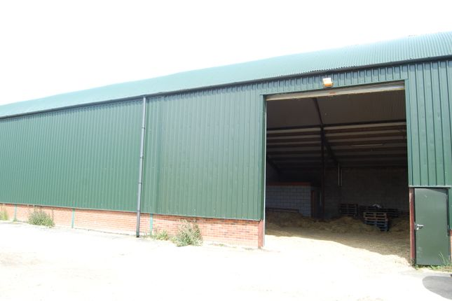 Thumbnail Commercial property to let in Mashbury Road, Chignal St. James, Chelmsford