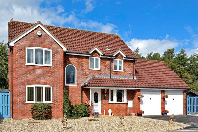 Thumbnail Detached house for sale in Juniper Close, Tiverton