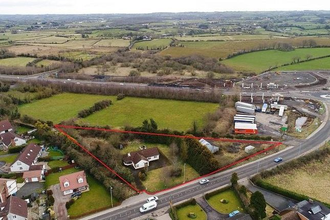 Thumbnail Land for sale in 213 Moneynick Road, Toomebridge, County Antrim
