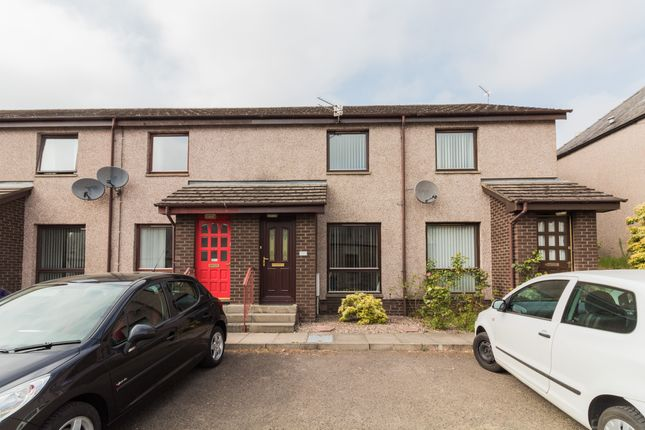 Thumbnail Terraced house to rent in Manor Street, Forfar