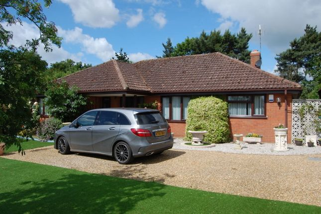 Thumbnail Detached bungalow for sale in Hollesley Road, Alderton, Woodbridge