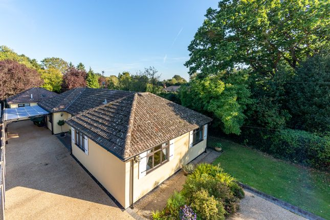 Thumbnail Detached bungalow for sale in Ardleigh Road, Dedham, Colchester