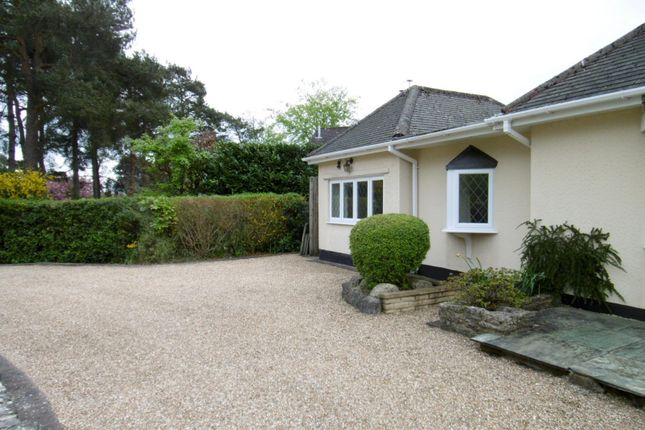 Thumbnail Property to rent in Lone Pine Drive, West Parley, Ferndown