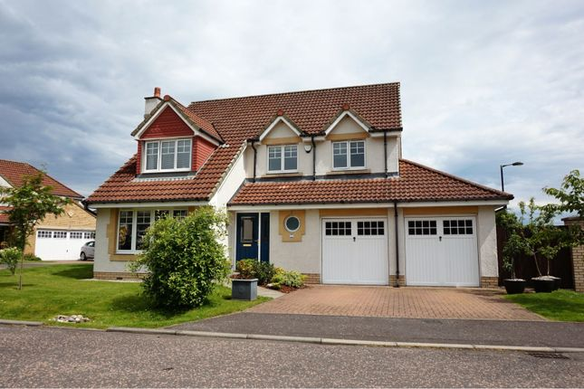 Thumbnail 4 bed detached house for sale in Thoms Close, Dundee