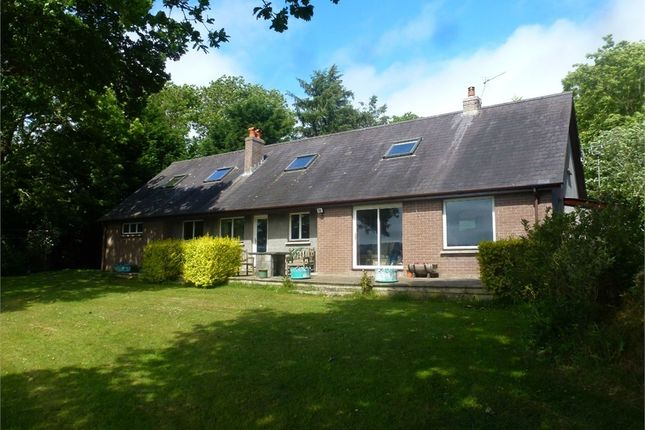 Thumbnail Detached bungalow for sale in The Holt, Cardigan, Ceredigion