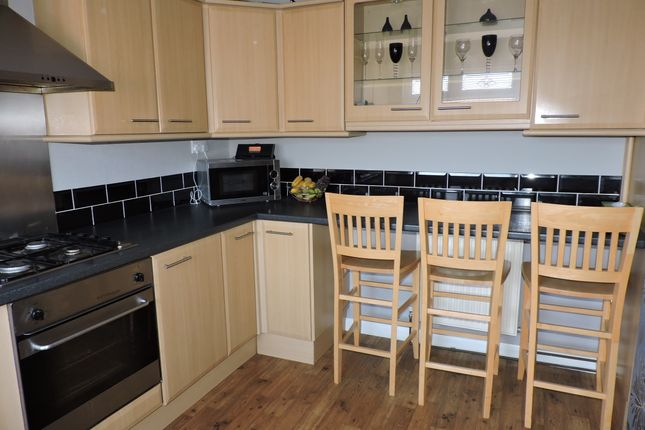 Thumbnail Terraced house to rent in Taunton Grove, Hartlepool