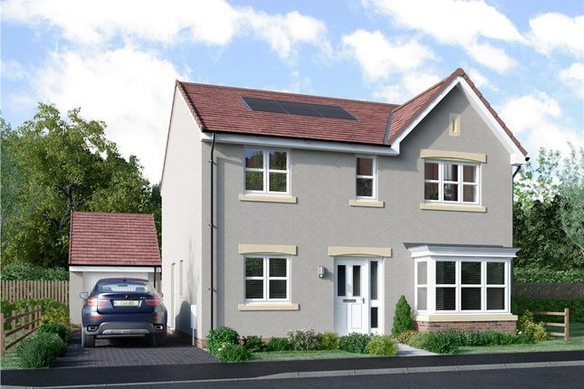 "Thumbnail Detached house for sale in ""Grant"" at Murieston Road, Murieston, Livingston"