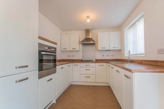 Thumbnail Detached house to rent in Dempsey Close, Wakefield