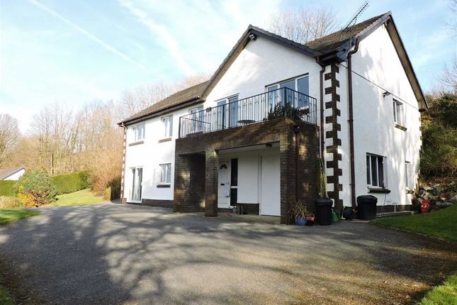 Thumbnail Detached house for sale in Alltwalis Road, Pontarsais, Carmarthen