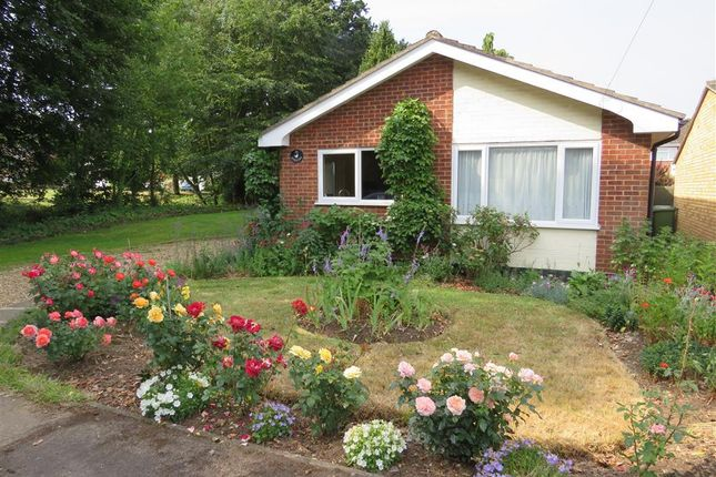 Thumbnail Bungalow to rent in Levishaw Close, Buxton, Norwich