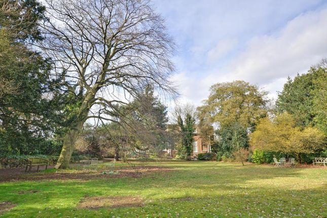 Communal Gardens of Macartney House, Chesterfield Walk, Greenwich, London SE10