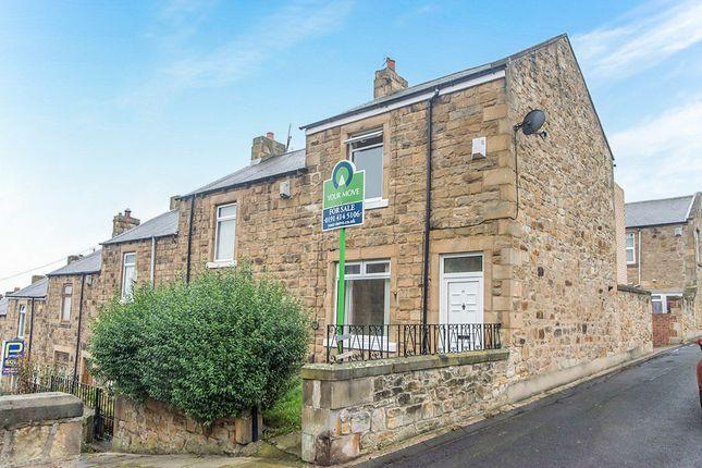 Thumbnail Property for sale in Ethel Avenue, Blaydon-On-Tyne