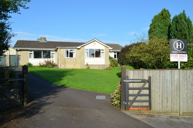 Thumbnail Detached bungalow for sale in Stockhill Close, Chilcompton