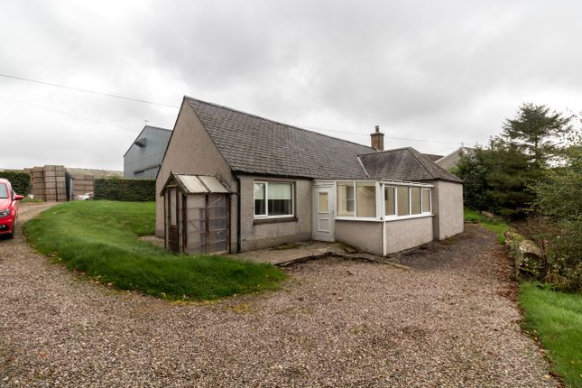 Thumbnail Detached house to rent in Kinnell, Arbroath