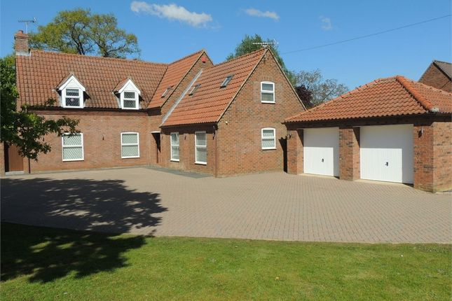 Thumbnail Detached house for sale in Narrow Brook, Church Road, Ten Mile Bank, Downham Market