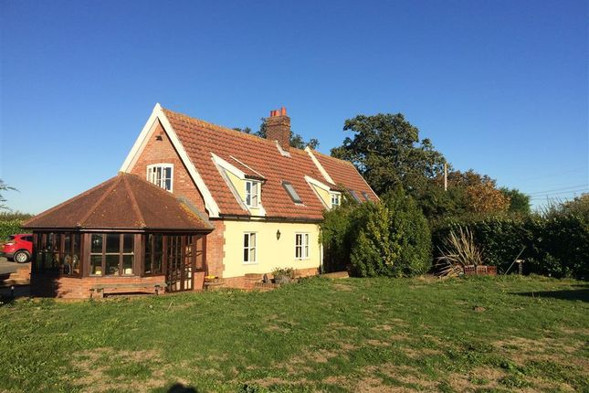 Thumbnail Detached house to rent in Marlesford Road, Campsea Ashe, Woodbridge