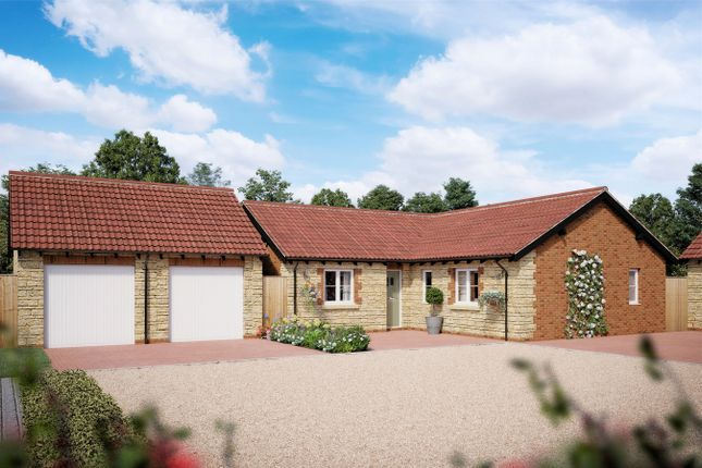 Thumbnail Detached bungalow for sale in The Woodstock Detached Bungalows, Florence Gardens, Chipping Sodbury