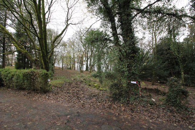 Thumbnail Land for sale in Chestnut Grove, Darwen