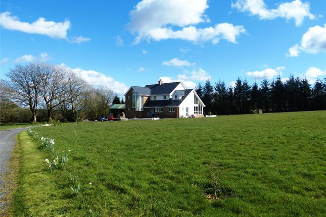 Thumbnail Detached house for sale in Geredon, Hermon, Glogue, Pembrokeshire