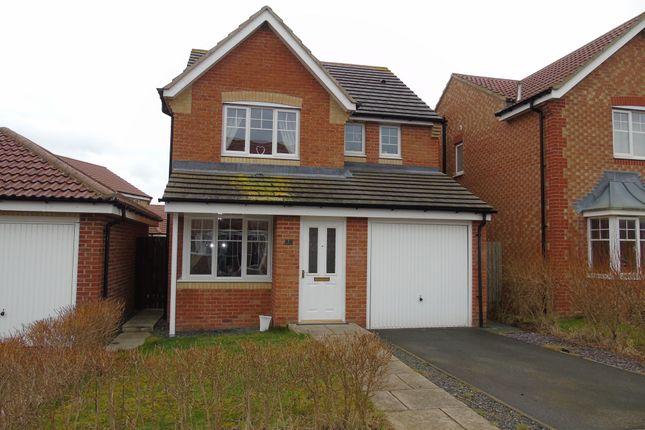 Thumbnail Detached house to rent in Whalton Grove, Ashington