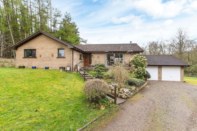 Thumbnail Bungalow for sale in Lamancha, West Linton