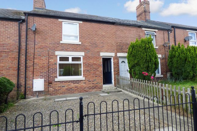 3 bed terraced house to rent in Hawthorn Street, Easington Colliery, Peterlee SR8