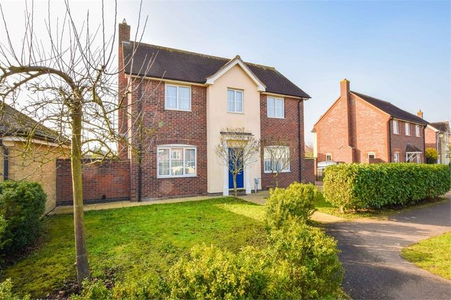 4 bed detached house for sale in Sandmartin Crescent, Stanway, Colchester, Essex