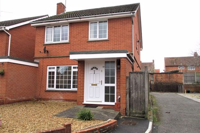 Thumbnail Detached house to rent in The Avenue, Yeovil