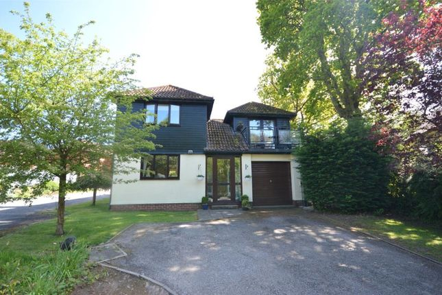 Thumbnail Detached house for sale in Woodbury, Exeter, Devon, Devon