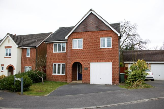 Thumbnail Detached house to rent in Blunt Road, Beggarwood, Basingstoke