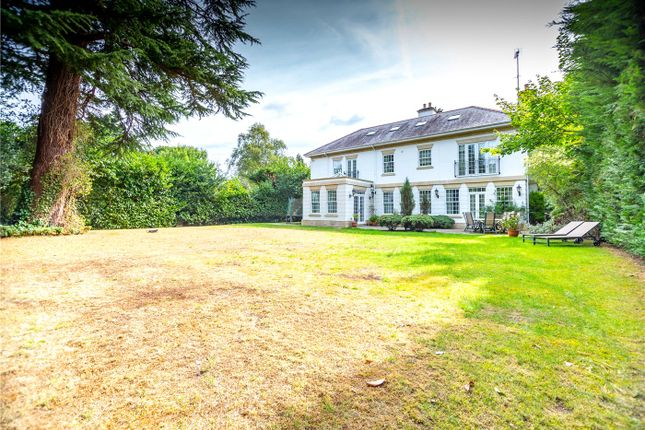 Thumbnail Detached house to rent in Friary Road, Ascot, Berkshire