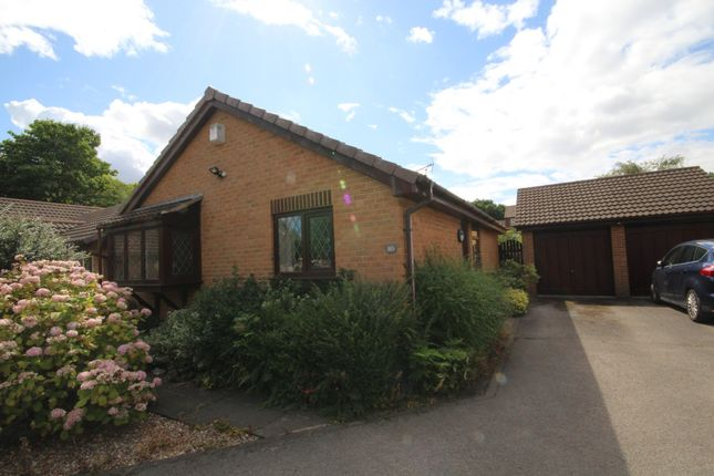 Thumbnail Bungalow to rent in Malthouse Way, Penwortham, Preston