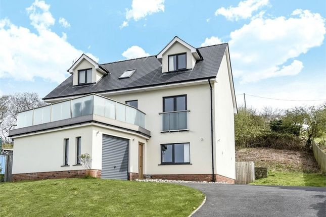 Thumbnail Detached house for sale in Dolphin Court, New Quay