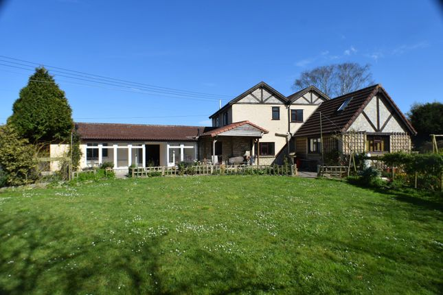 Thumbnail Detached house for sale in The Causeway, Woolavington, Bridgwater