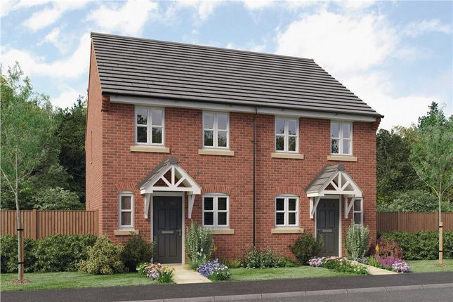 """Thumbnail Semi-detached house for sale in """"Burroughs"""" at Mount Pleasant Road, Repton, Derby"""