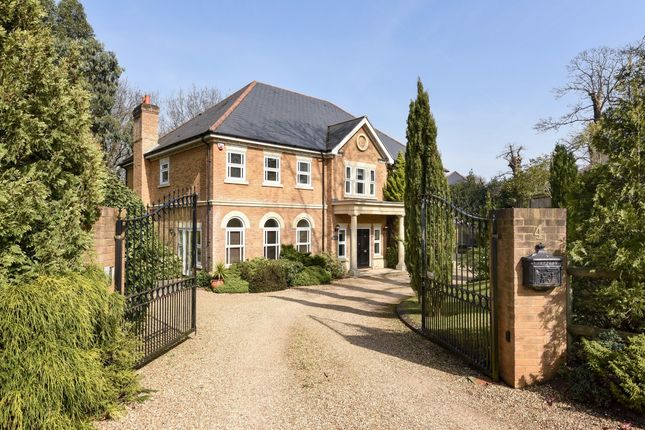 Thumbnail Detached house to rent in Stonehill Gate, Hancocks Mount, Ascot