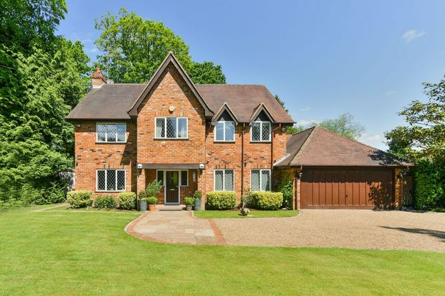 Thumbnail Detached house for sale in The Warren, Kingswood, Tadworth
