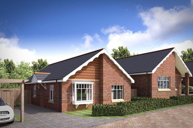 Thumbnail Bungalow for sale in Eureka Lodge Gardens, Swadlincote