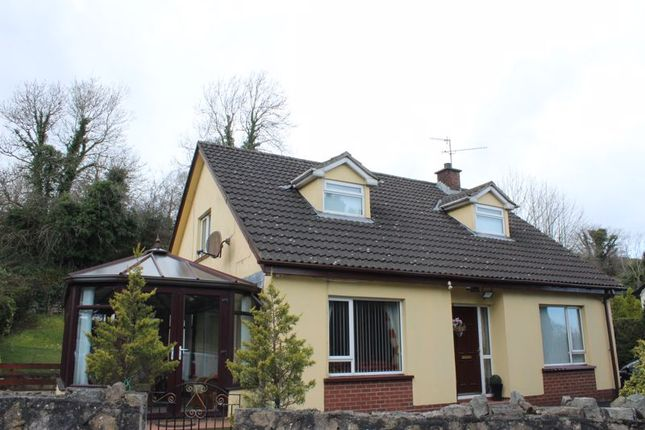 Thumbnail Detached house for sale in Carriff Vale, Cloughoge, Newry