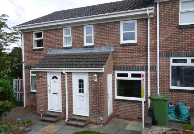 Thumbnail Terraced house to rent in Eamont Mews, Pategill, Penrith