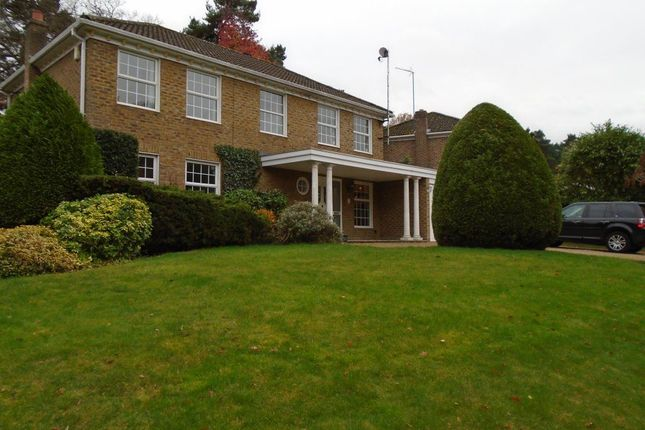 Thumbnail Detached house to rent in Heronscourt, Lightwater
