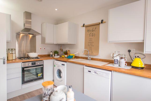 Thumbnail Semi-detached house for sale in Tavistock Street, Dunstable