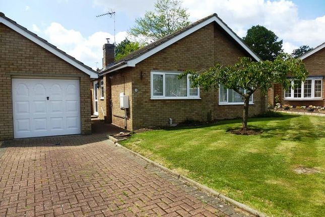 2 bed detached bungalow to rent in Elm Close, Stilton, Peterborough