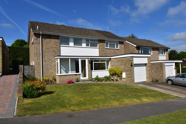 Thumbnail Detached house for sale in Barnfield, Crowborough