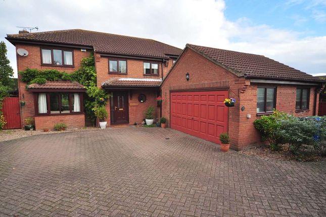 Thumbnail Detached house for sale in Cedar Close, Scotter, Gainsborough, Lincolnshire