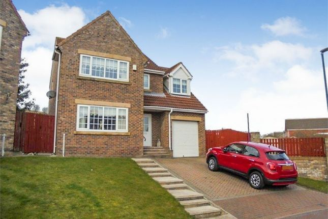 Thumbnail Detached house for sale in Ellison Meadow, Horden, Peterlee, Durham