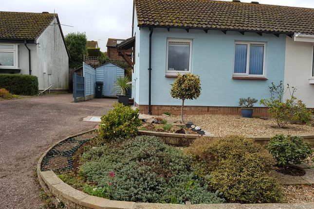Thumbnail Bungalow to rent in Larch Close, Seaton