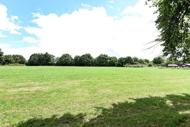 Garden of Field View, Feltham TW13